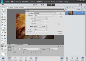 photoshop elements11